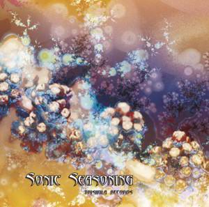 Sonic Seasoning